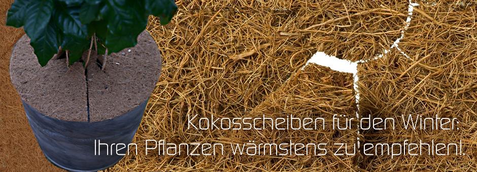 Kokosscheiben für den Winter: Ihren Pflanzen wärmstens zu empfehlen!