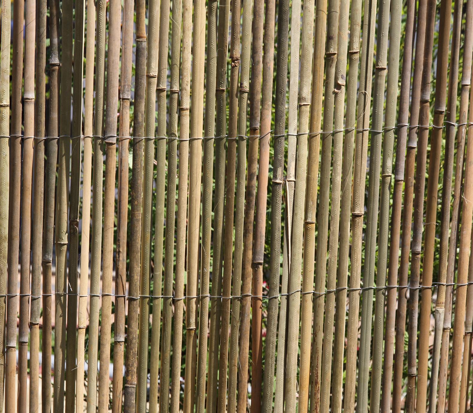 BAMBUSMATTE 3m x 1 5m BAMBUS Sichtschutzmatte Zaun Sichtschutz