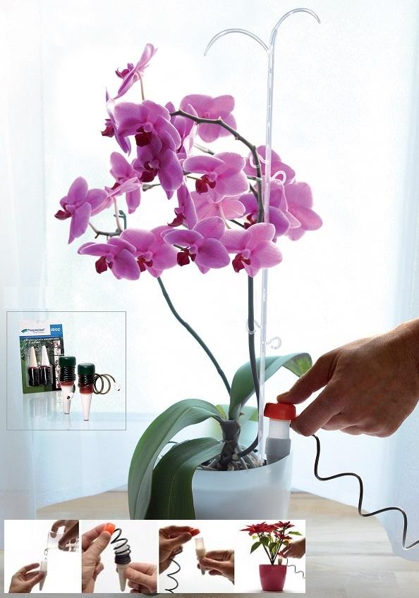 10 st ck wasserspender automatische bew sserung zimmerpflanzen topfpflanzen ebay. Black Bedroom Furniture Sets. Home Design Ideas