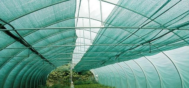 Geliebte SCHATTIERNETZ 60% 2m x 5m Sonnenschutz Sichtschutz &TZ_73